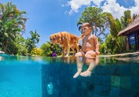 strandurlaub holland mit kindern